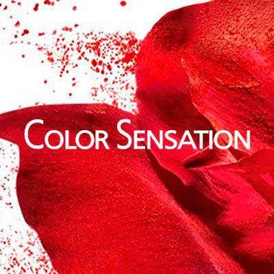 Color Sensation